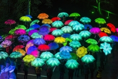 Cirque-Bijou-Umbrella-Project-Andre-Pattenden-SMALL